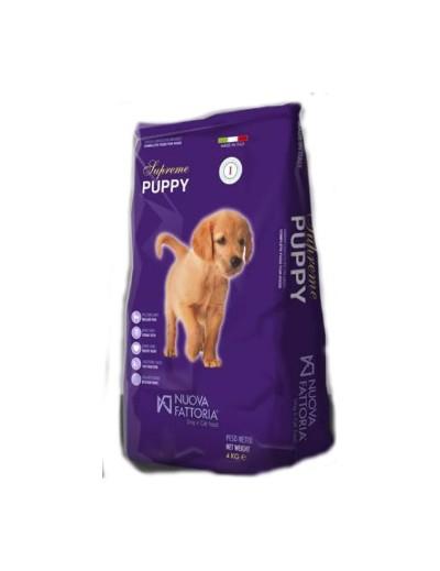 Σκυλοτροφή Nueva Fattoria